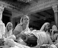 Pious widows, 1971